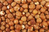 Hazel nuts — Stock Photo