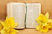 βιβλίο προσευχής και daffodils — Φωτογραφία Αρχείου