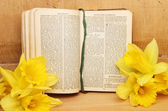 Bönbok och påskliljor — Stockfoto