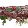 Decorated yule log — Stock Photo