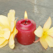 Burning candle and flowers - Stockfoto