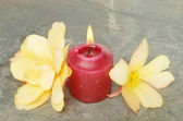 Burning candle and flowers — Stock Photo