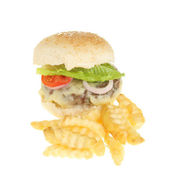 Cheese burger and fries — Stock Photo