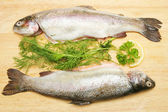 Two rainbow trout with fresh herbs — Stock Photo