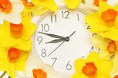 Spring time — Stockfoto