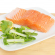 Salmon fillet and garnish — Stok fotoğraf