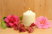 Candle and camellia flowers — Stok fotoğraf