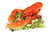 Lobster and salad — Stock Photo
