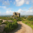 Carn Brea Castle — Stock Photo #17358931