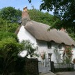 Thatched cottage — Stock Photo #17359171