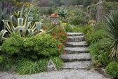 Sub 的热带花园 — 图库照片