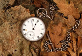 Antique pocket watch on dead leaves — Stock Photo