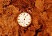 Antique pocket watch on dead leaves sepia — Stockfoto