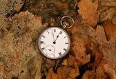 Antique pocket watch on dead leaves — Стоковое фото