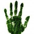 Green right hand — Stock Photo #18138125