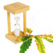 Egg timer and leaves — Stock Photo
