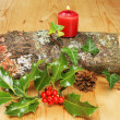 Yule log — Stock Photo #18138353