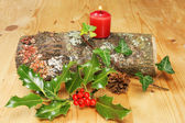 Yule log — Stock Photo