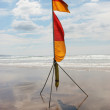 Lifeguard flag — Stock Photo