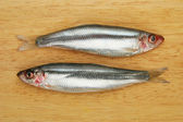 Sprats on board — Stock Photo