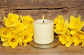 Candle and daffodils — Stock Photo