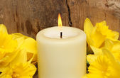 Candle and daffodils closeup — Stock Photo