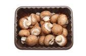 Chestnut mushrooms — Stock Photo