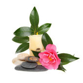 Camellia and candle — Stock Photo