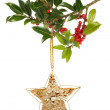 Holly and star — Stock Photo #34625231