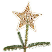 Star on tree — Stock Photo