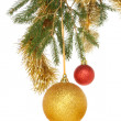 Baubles in tree — Stock Photo