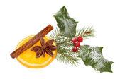 Christmas spice — Stock Photo