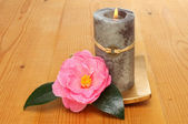 Candle with camellia — Stock Photo