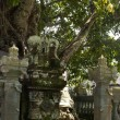 Ancient sculpture in Bali — 图库照片
