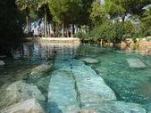 Swimming Among Ancient Ruins — Stock Photo