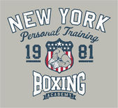 New York Boxing academy — Stock Vector