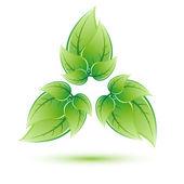 Eco-logotypen på vit bakgrund — Stockvektor