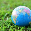 Royalty-Free Stock Photo: A globe on green grass