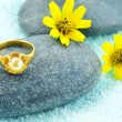 Gold ring and daisy flower — 图库照片 #16846857