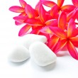 Stock Photo: Red Plumeria And Stone