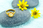 Gold ring and daisy flower — Stock Photo