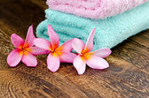 Arrangement of pink plumeria — Stock Photo