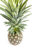 Pineapple on white background with clipping path — Stock Photo