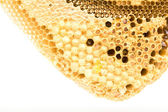 Sweet honeycombs with honey, isolated on white — Stock fotografie