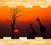 Brick wall with silhouettes of African safari theme behind — Stock Photo