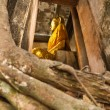 Stock Photo: Big buddha in church cover by old big tree root, Samut Songkhram