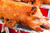 Pig Roast — Stock Photo