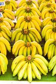 Rows of Yellow bananas — Stock Photo