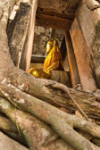 Big buddha in church cover by old big tree root, Samut Songkhram — Stock Photo