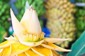 Beautiful banana flower — Stock Photo